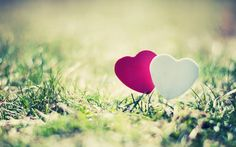 pink and white love romantic wallpaper