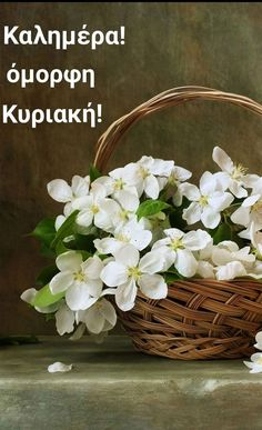 From breaking news and entertainment to sports and politics, get the full story with all the live commentary. Beautiful Flowers, Beautiful Pictures, Flowers Nature, Beautiful Places, Greek Language, Spring Has Sprung, Flower Basket, Morning Images, Good Morning