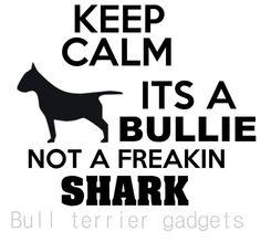 It's a Bullie