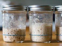 The Best Flour for Sourdough Starters: An Investigation Rye Sourdough Starter, Sourdough Bread, How To Make Bread, Bread Making, Rye Flour, Serious Eats, Whole Wheat Flour, Starters, Mason Jars