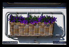 Hier wird der Frühling spazieren gefahren -  Pixelfaxe/Flickr Photo And Video, Outdoor, Do Your Thing, Nice Asses, Outdoors, Outdoor Games, Outdoor Living