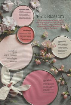 Kitchen Storage Ideas Idea Box by Pretty Pink Paint Colors from Better Homes and Gardens Mag Pink Paint Colors, Paint Color Schemes, Interior Paint Colors, Painting Tips, House Painting, Pink Blossom, Cherry Blossoms, Better Homes And Gardens, Color Pallets
