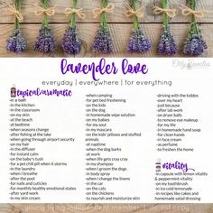Lavender Essential Oil Uses and a NEW wonderful new Promotion! | Decorchick!®