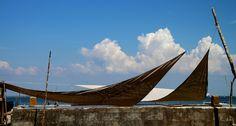 Presqu'île du Cap-Ferret -Le Petit Piquey-