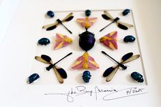 Artframe with real insects : Topquality display with beautiful mosaic with damselflies by Alanscollectibles on Etsy