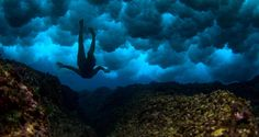 Sarah Lee's underwater photography engages the deep yearning for calm – for serenity and peace – at the heart of each of us. Enveloped by the ocean all outside influence falls away, leaving only yourself, cool water and the magical landscape that's hidden beneath its waves. At once part of the world it feels separate, too; an undiscovered realm, magical and exciting.