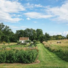 While seeking the perfect acreage....Property search includes asking questions, of owner and yourself, before buying land.