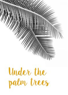 Under the palm trees, by Flora David
