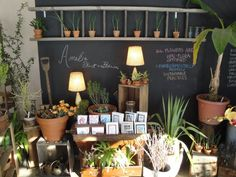Amelia Flower & Garden - blackboard wall with hanging ladder.