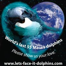 Please sign the petition before these beautiful creatures are extinct due to human carelessness. Save the Maui's & Hector's dolphins before it too late