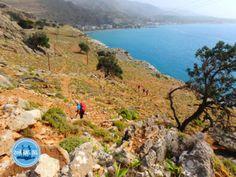 Urlaub und Apartmentvermietung auf Kreta in 2021 und 2022 Water, Outdoor, Crete Greece, Wine Tasting, Vacation, Gripe Water, Outdoors, Outdoor Games, The Great Outdoors