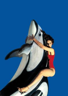 Killer Whale. Guy Bourdin