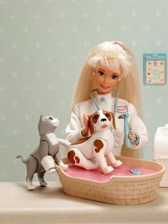 1996: Pet Doctor. I still have this and the animals except the accessories that came with.