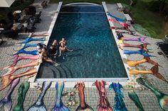 Image detail for -UW Photo pro Chris Crumley brings mermaids to life! Mermaid Tails For Sale, Diy Mermaid Tail, Silicone Mermaid Tails, Fin Fun Mermaid, Mermaid Cove, The Little Mermaid, Realistic Mermaid Tails, Mermaid Pictures, Fantasy Mermaids