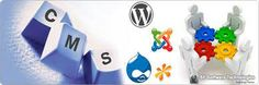 cms Web Design | Content Management System   SE Software Technologies is Company that Providing the Services of web design & development cms Web Design, Content Management. Magento Website, Online Pharmacy Store Website,Restaurant Website,Word press Website, Cms, Web design Content management System.   For price and query contact us now to see how, we can help you.  Company Name: SE Software Technologies Hello : +1415 418 7162 www.superconeng.com Email: info@superconeng.com Skype : nacseng