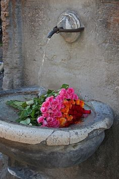 Fresh Flowers - Rome, Italy.  Note from photographer (rgb48) on flickr:  Keeping Flowers Fresh, Rome Style  Fountains are all around Rome giving a refreshing drink on a hot day. I walked past this fountain near Vatican City several times, but on this occasion, a nearby restaurant had placed its flowers for the evening in the cool fountain to keep them fresh while they prepared for the evening service.