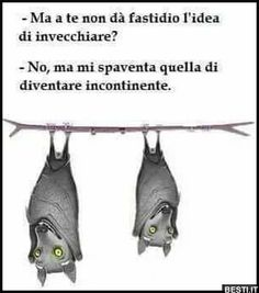 Funny Images, Funny Pictures, Italian Quotes, Funny Jokes, Have Fun, Google, Meme, Cartoon, Facebook