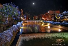 Trikala Potamos Lithaios, A City With a Good Cafe and Nightlife Scene Cool Cafe, Famous Places, Greek Islands, Night Life, Cool Photos, Greece, Beautiful Places, Scenery, To Go