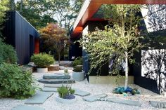 perfect pairing: mid century hard scape and sculptural greenery