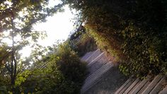 Path Paths, Country Roads, Beach, Pathways, Seaside, Walkways