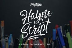 Hayne Script + Sans by dexsarharryfonts on @creativemarket