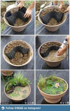 Mini pot pond