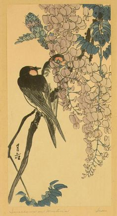 Japanese Swallows