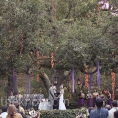 The ceremony took place beneath a giant oak tree. Fabric, twinkling lights and lanterns hung from above to create a magical vibe.
