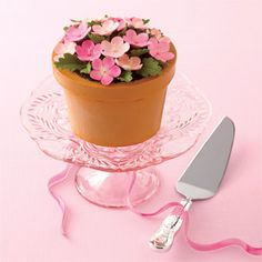 potted plant cake $110 and $170 for the server from Tiffany