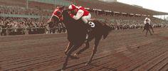 Fantastic horse racing GIF!