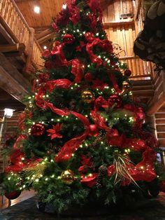 It's beginning to look a lot like Christmas | Wilderness Ridge, Lincoln NE