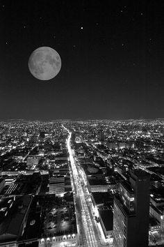 Me gustaría ayudar a este hermoso país que es México