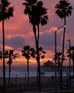 Huntington Beach Pier, Palm, Celestial, Outdoor, Sunsets, Pictures, Outdoors, Outdoor Games, The Great Outdoors