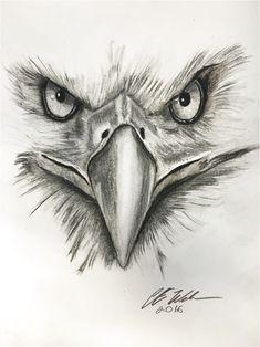 eagle tattoo ile ilgili g�rsel sonucu #ModernTattooDesigns Click to see more. Bird Drawings, Pencil Art Drawings, Cool Art Drawings, Art Drawings Sketches, Animal Drawings, Tattoo Drawings, Drawing Ideas, Adorable Drawings, Drawing Drawing