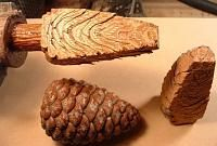 turning pine cones