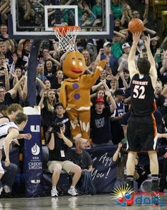 Aggie fans replace Wild Bill with The Gingerbread Man for the CIT Championship Game between USU and Mercer