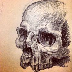 Human skull sketch.