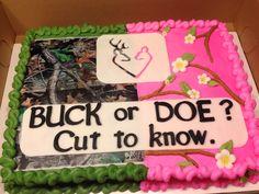 Buck or doe baby reveal cake