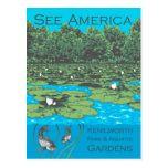 Kenilworth Park and Aquatic Gardens Postcard fishing kayaks, fishing rings, fly fishing shirt Fishing Gifts, Best Fishing, Kayak Fishing, Different Fish, Kayaks, National Parks, Elephant, Gardens, Lovers