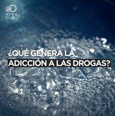 Discovery News en Español https://facebook.com/DNewsEnEspanol/videos/1462182237126182/