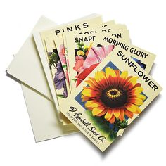 Heirloom Flower Seed Packet Note Cards | Beekman 1802 Mercantile