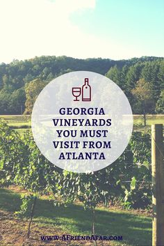 North Georgia Vineyards you MUST VISIT from Atlanta - Great Atlanta Day Trips! www.afriendafar.com