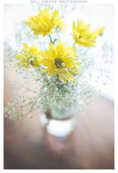 Howard House (Benson NC) wedding, Will Greene Photography