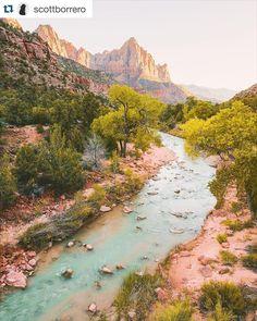 So pretty. #Repost @scottborrero  Zion :  by repostapp
