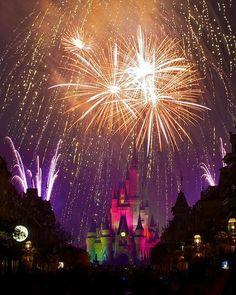 Conheça a Disney com a Potência Viagens.