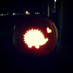 Hedgehog pumpkin carving! - Hedgehog Central – Hedgehog pet care ...