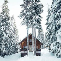Want to experience the goodness of living in a country-style house and away from the city, and if you love hands-on, log cabin kits is the solution. Winter Cabin, Cozy Cabin, Snow Cabin, Winter Snow, Cabin Homes, Log Homes, Winter Schnee, Forest Cabin, Forest House