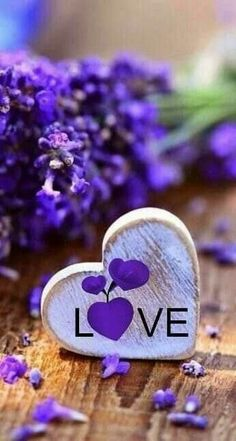 Good morning images with beautiful flowers Purple Love, All Things Purple, Purple Rain, Shades Of Purple, Purple Hearts, Love Heart Images, Love You Images, I Love Heart, Love Pictures