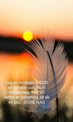 Hope Quotes, Best Quotes, Evening Quotes, Evening Greetings, Afrikaanse Quotes, Good Night Blessings, Goeie Nag, Good Night Sweet Dreams, Good Night Image