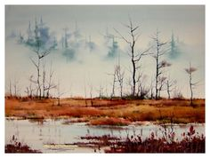 sterling edwards fog in the bog